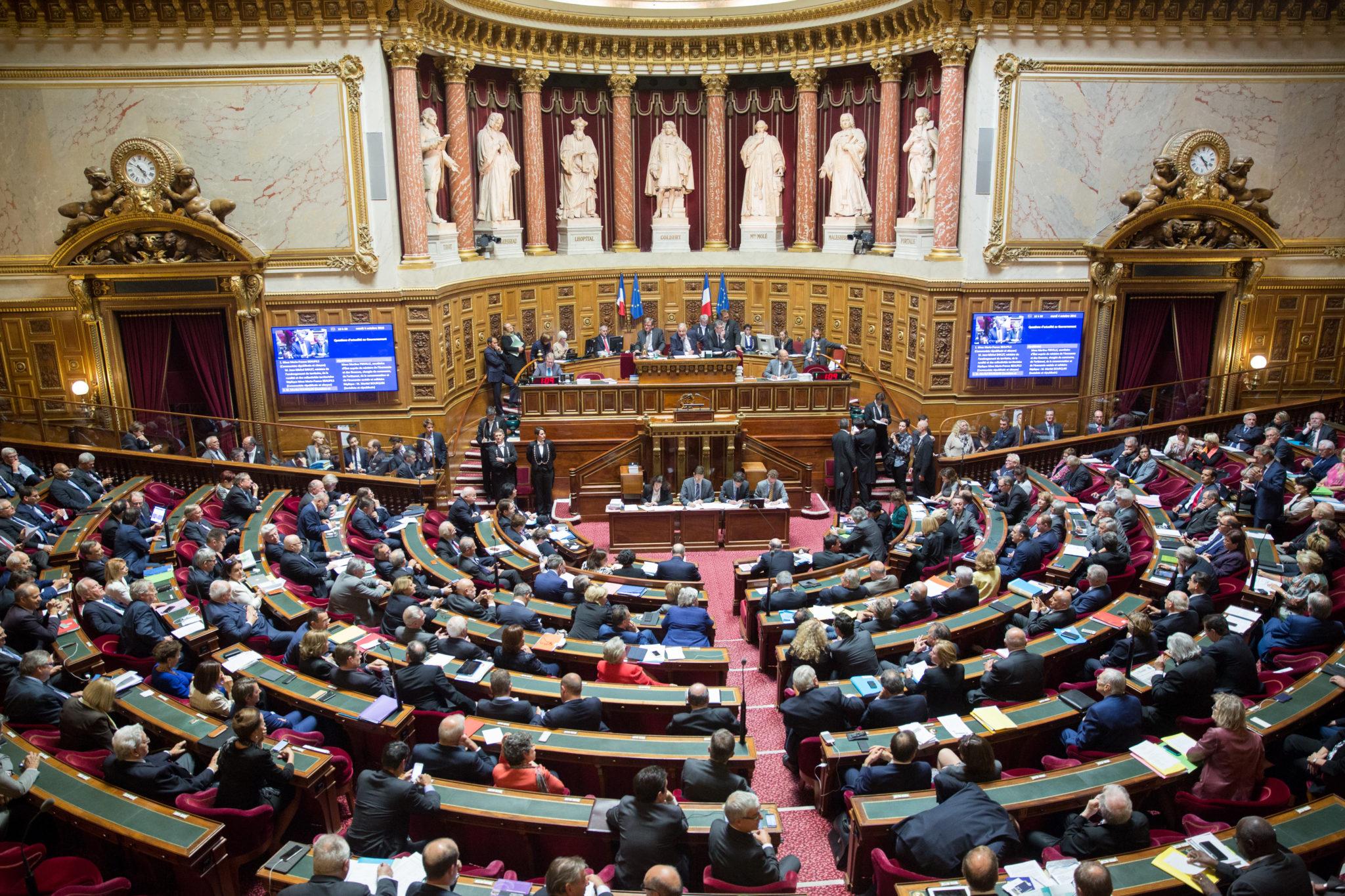 <b> L'affaire Benalla et la Constitution : le Sénat, organe de contrôle politique de l'exécutif </b> </br> </br> Par Denis Baranger