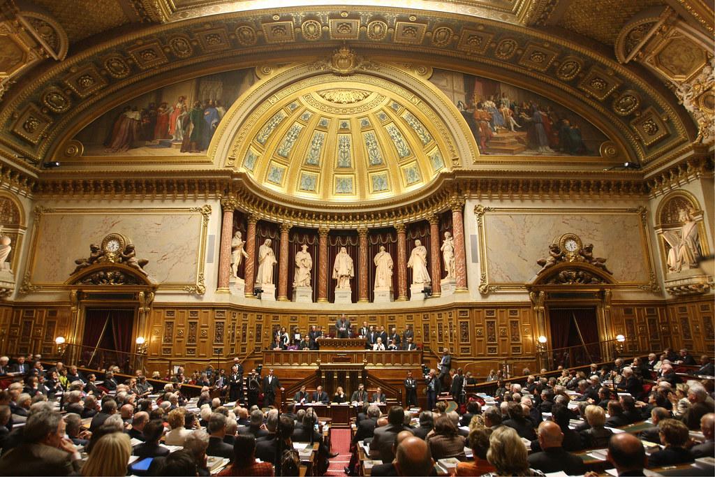 <b> Le rejet de la déclaration de politique générale devant le Sénat </b></br> </br> Par Jean de Saint Sernin