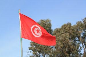 <b> L'élection présidentielle en Tunisie: vers un renforcement du rôle du président? </b> </br> </br> Par Azza Rekik
