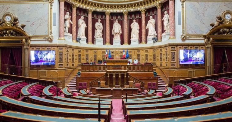 <b> Le Parlement face à la crise du covid-19 (2/2) </b> </br> </br> Par Elina Lemaire